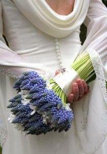 muscari bridal